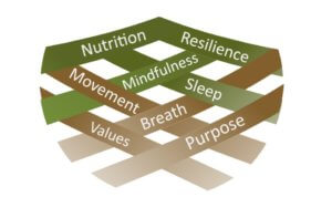 wellbeing principles