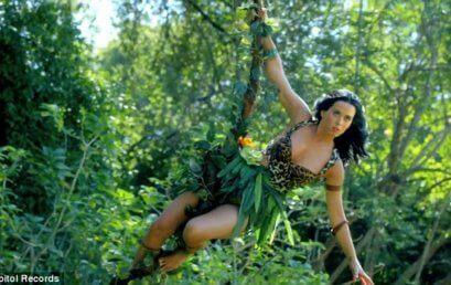 The wild jungle of feminine work life balance